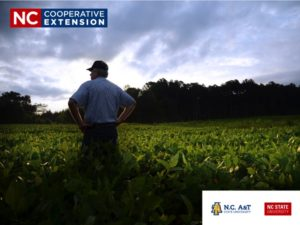 N.C. Cooperative Extension Co-brand_Logo separation example 2