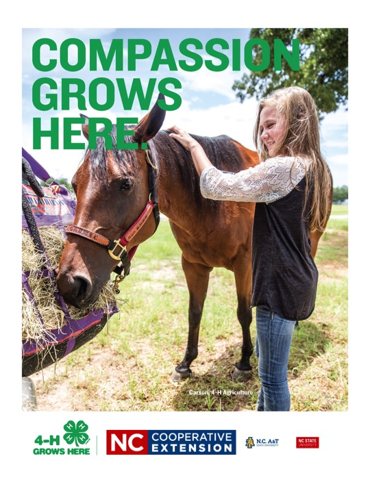N.C. Cooperative Extension Program Branding Example_4-H Poster