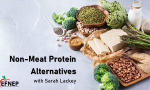 Cover photo for Non-Meat Protein Alternatives