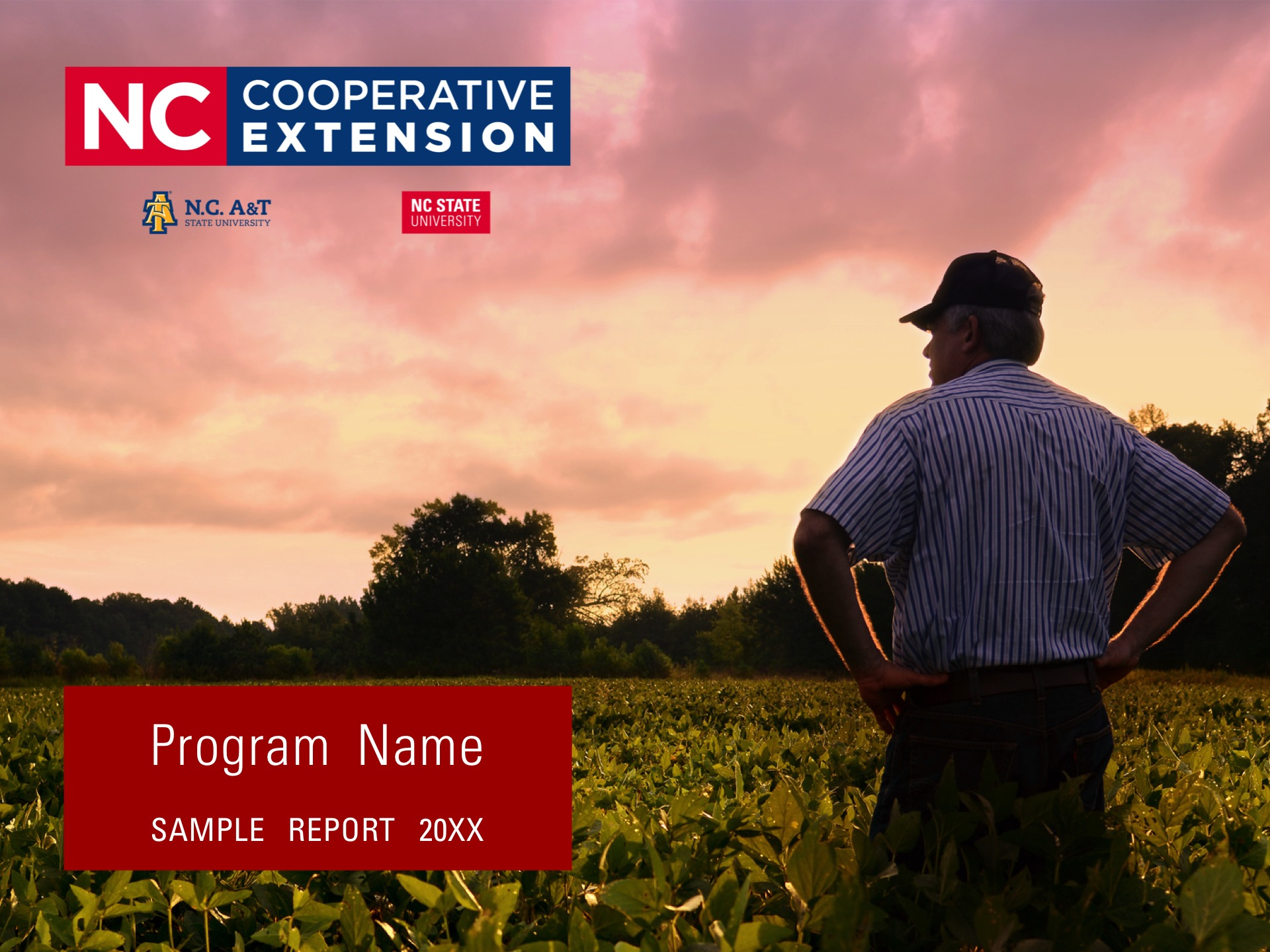 North Carolina Cooperative Extension program branding example for a report.